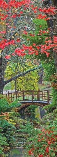Vertical-Bridge-Banner-2